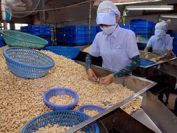 export-of-vietnam