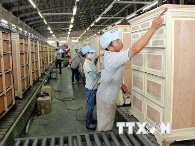 timber-export
