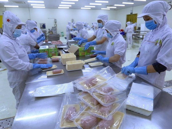Vietnam's growth potential is strong: Moody's