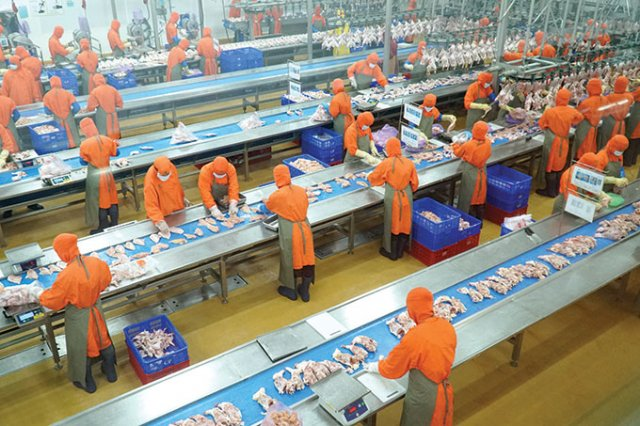 Foreign agriculture investors eager to grow