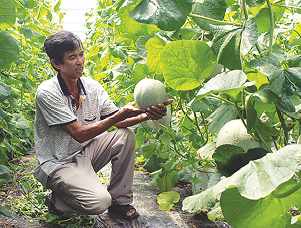 Farmers get smart to improve business